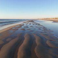 Naturlige kurver på stranden